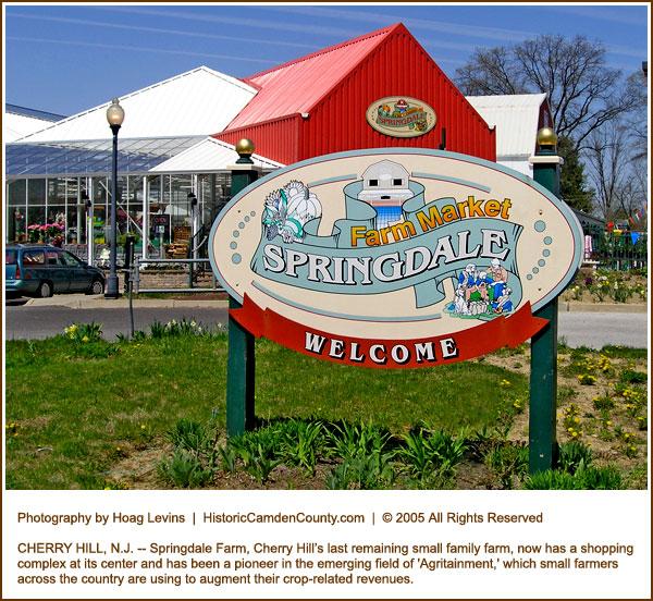 Springdale Farm Receives Historic Preservation Award